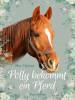 Thea Oljelund: Polly bekommt ein Pferd